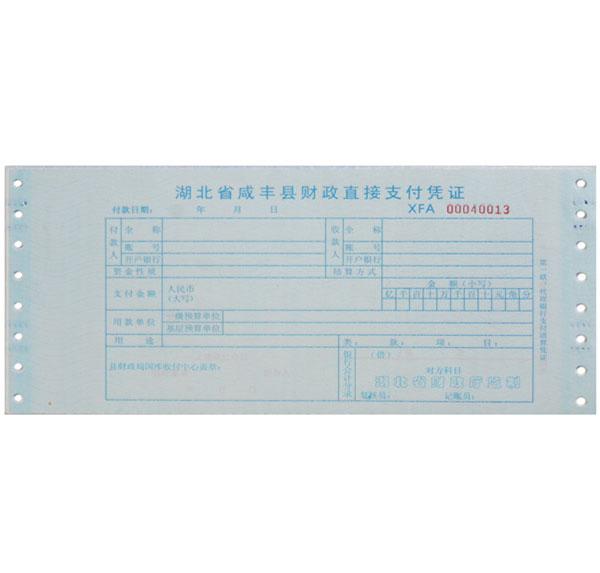 财政支付电脑联单票据